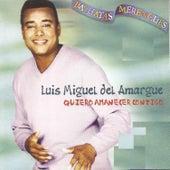 Quiero Amanacer Contigo by Luis Miguel del Amargue