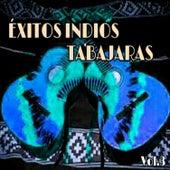 Éxitos Indios Tabajaras, Vol. 3 by Los Indios Tabajaras