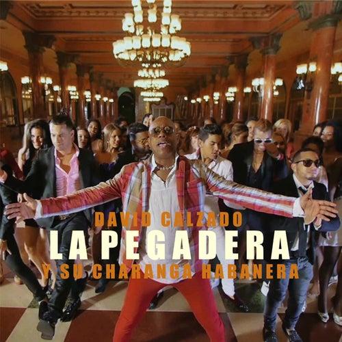 La Pegadera by David calzado y su Charanga Habanera