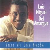 Amor de una Noche by Luis Miguel del Amargue