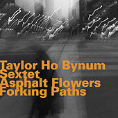 Asphalt Flowers Forking Paths by Taylor Ho Bynum