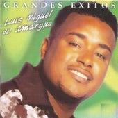 Grandes Exitos by Luis Miguel del Amargue