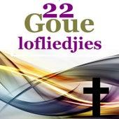 22 Goue Lofliedjies by Various Artists