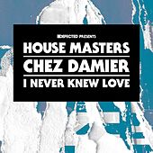 I Never Knew Love by Chez Damier