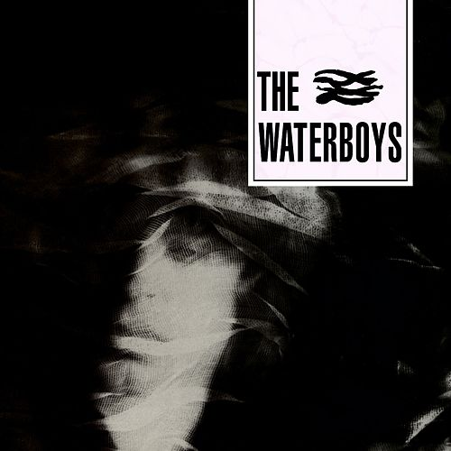 The Waterboys by The Waterboys
