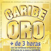 Caribe Oro by Various Artists