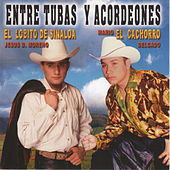 Entre Tubas y Acordeones by Various Artists