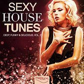 Sexy House Tunes - Deep, Funky & Delicious, Vol. 2 by Various Artists