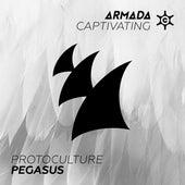 Pegasus by Protoculture
