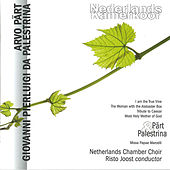 Pärt & Palestrina by Netherlands Chamber Choir