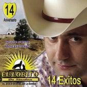 14 Éxitos by El Lobito De Sinaloa