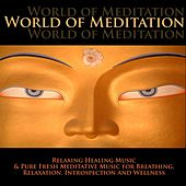 World of Meditation - Relaxing Healing Music & Pure Fresh Meditative Music for Breathing, Relaxation, Introspection and Wellness by Radio Meditation Music