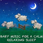 Baby Music for a Calm Relaxing Sleep by Various Artists