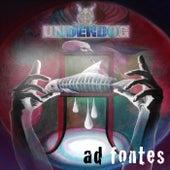 Ad fontes by Underdog (Punk)