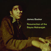 Resurrection Of The Bayou Maharajah by James Booker