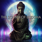 The Sound of Buddha by Various Artists