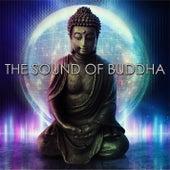 The Sound of Buddha von Various Artists