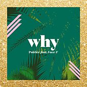 Why by Poirier