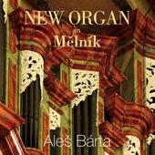 New Organ in Mělník by Aleš Bárta