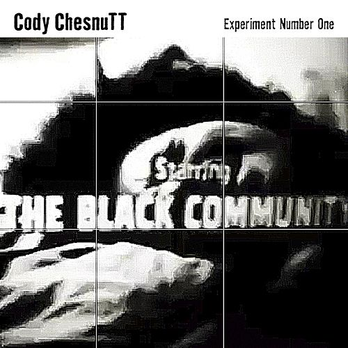 Experiment Number One by Cody ChesnuTT