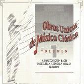 Obras Unicas de Música Clásica Vol. 1 by Various Artists