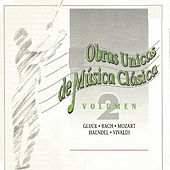 Obras Unicas de Música Clásica Vol. 2 by Various Artists