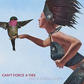 Can't Force a Fire by B Forrest