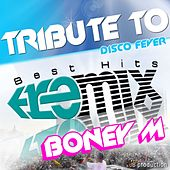 Tribute to Boney M: Brown Girl in the Ring / River of Babylon / Sunny / Ma Baker / Rasputin / Daddy Cool / Belfast / Gotta Go Home / One Way Ticket (Best Hits Remix) by Disco Fever