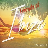 Friends of Ibiza, Vol. 1 (Balearic Chill out, Lounge & Chill House Tunes) by Various Artists