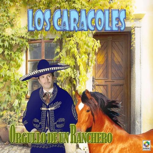 Orgullo de un Ranchero by Los Caracoles