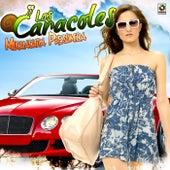 Muchachita Presumida by Los Caracoles