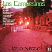Velo Negro by Los Campesinos!