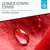 Tantra Energy by Gomer Edwin Evans