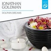 Dolphin Dreams by Jonathan Goldman