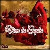 Viva la Copla, Vol. 6 by Various Artists