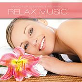 Relax Music, Vol. 17 by Various Artists