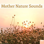 Mother Nature Sounds by Various Artists