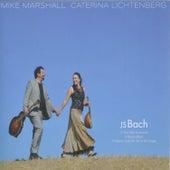 JS Bach by Caterina Lichtenberg