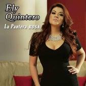 La Pantera Rosa by Ely Quintero