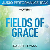 Fields of Grace by Darrell Evans