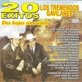 20 Éxitos Dos Hojas Sin Rumbo by Los Tremendos Gavilanes