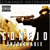 Untouchable by Conejo