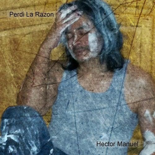 Perdi la Razon by Hector Manuel