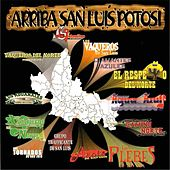 Arriba San Luis Potosi, Vol. 4 by Various Artists