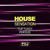 House Sensation (Top Tunes for DJ's) by Various Artists