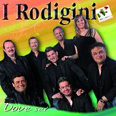 Dove sei by I Rodigini