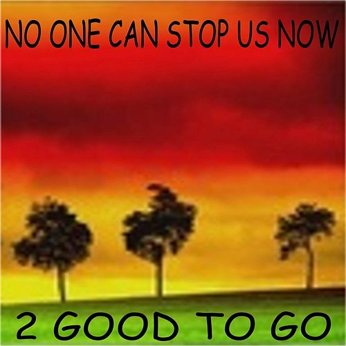 No One Can Stop Us Now by 2 Good To Go