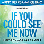 If You Could See Me Now by The Integrity Worship Singers