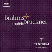 Brahms & Bruckner: Motets by Various Artists