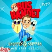 Snoppen & Snippan och såna grejer by Various Artists